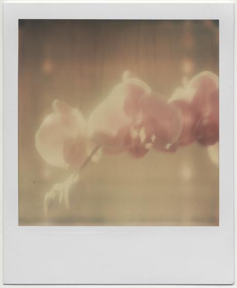 Opalescence, 2